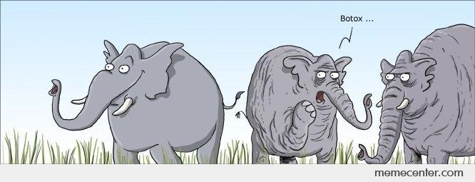a botox meme of a wrinkled elephant complains about his friend's botox